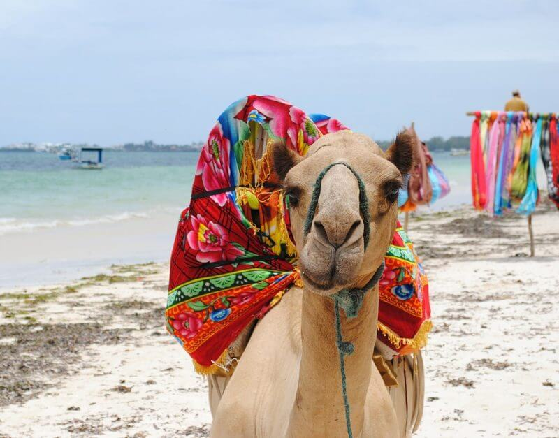 Playa-Diani-Beach-kenia