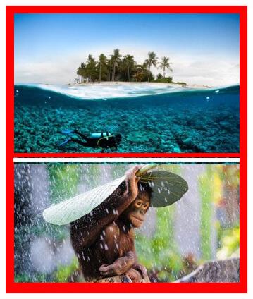clima-indonesia