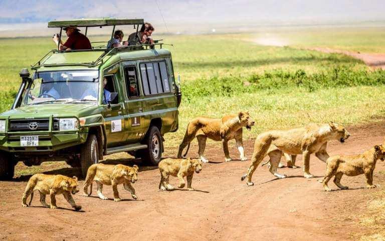 transporte-Tanzania